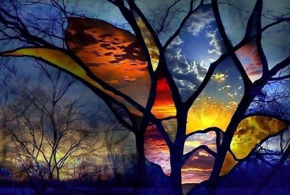 Okná do sveta