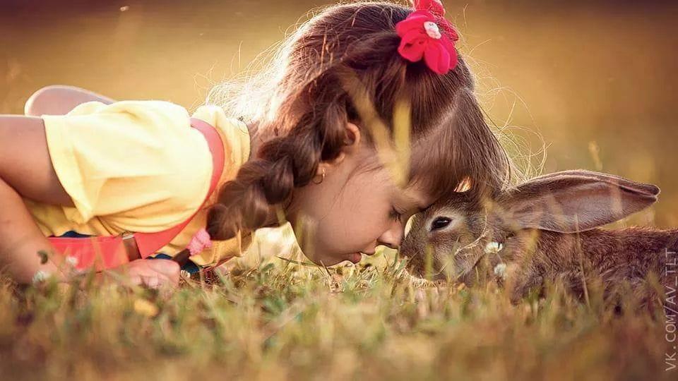 Ako strácame pokoj a lásku